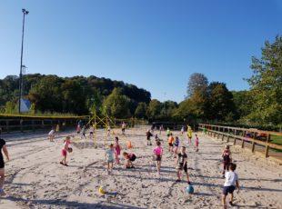 Sportdag basisscholen